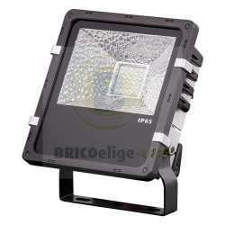 Proyector LED Profesional 50W para Exterior SPS2205060