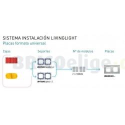 Placa 2 Ventanas Niquel LNA4802M2NS BTicino Livinglight