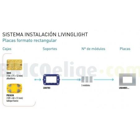 Placa Rectangular 3 Módulos LNA4803KG Gris hielo BTicino Livinglight